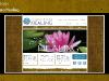 Holistic Karma Healing - Website